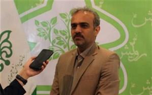 مسابقات بازیهای فکری سرگرمی، موجب ایجاد یک جریان اجتماعی در فارس شده است