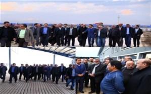 وزیر جهادکشاورزی به همراه استاندار قزوین از یک واحد دامداری در بوئین زهرا بازدید کرد