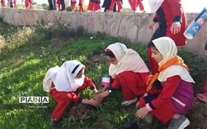 کاشت نهال بمناسبت سالروز ورود امام توسط همیاران محیط زیست مسجدسلیمان