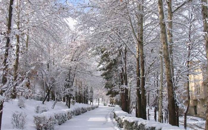 زمستان همدان