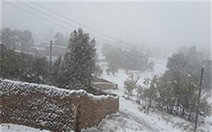 مدیر کل آموزش و پرورش خراسان جنوبی : بارش برف و یخبندان مدارس ابتدایی 53 روستا را تعطیل کرد