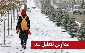برف و سرما مدارس برخی شهرهای استان اردبیل را تعطیل کرد