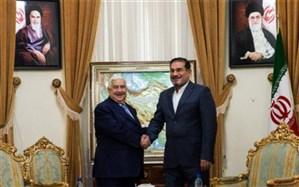 شمخانی: همکاری ایران و سوریه تا پایان بحران امنیتی ادامه خواهد داشت