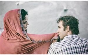 هوتن شکیبا بهترین بازیگر مرد جشنواره فیلم فجر شد