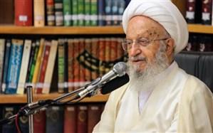 آیت الله مکارم شیرازی: سلفی گری را نباید تفسیری از اسلام دانست