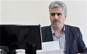 سخنگوی شورای صنفی نمایش: تا زمان تصویب آییننامه جدید، فیلمهای نوروزی مشخص نمیشود
