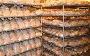 عرضه گوشت مرغ با قیمتی بالاتر از 12 هزار تومان تخلف است