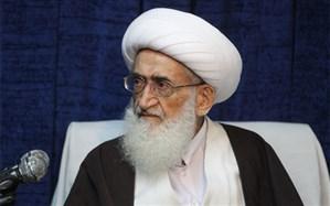 آیت الله نوری همدانی:  آیت الله مؤمن از شخصیتهای اثرگذار حرکت عظیم انقلاب اسلامی بود