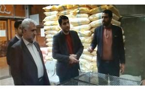 بازدید فرماندار اسدآباد از نانوایی های این شهرستان