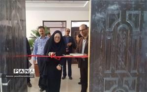 افتتاح نمایشگاه توانمندیهای دانش آموزی دبیرستان شهید رحیمی فر میبد توسط رئیس سمپاد یزد