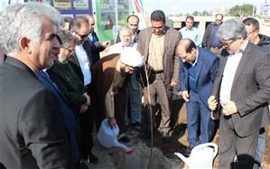شهردار شهر قدس؛ مسئولین و مردم  فرهنگ درخت کاری و ایجاد فضای سبز را سرلوحه کار خود قرار دهند