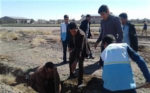 روز درختکاری در مجموعه شهید رجایی گناباد