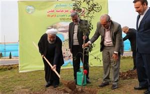 کاشت درخت توسط رئیس جمهوری در رشت + تصاویر