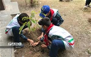 اجرای آیین درختکاری در مدارس ناحیه 2 اهواز