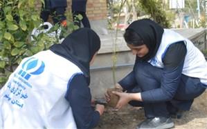 خبرنگاران پانا استان بوشهر نهال کاشتند