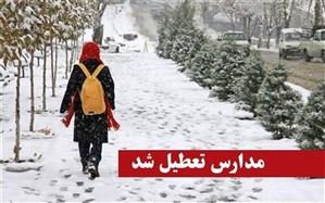 برف و سرما مدارس اردبیل را به تعطیلی کشاند