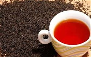 آیا چای سبز باعث لاغری میشود