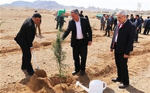 بیایید برای زنده ماندن زمین درخت بکاریم