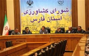 استاندار فارس: مقصر جلوه دادن دولت، دور از انصاف است