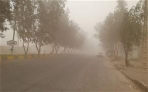رییس سازمان محیط زیست: ۱۵۰میلیون دلار هزینه مقابله با ریزگردها در کشور است