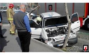 تصویر/ «پراید» بعد از تصادف با درخت