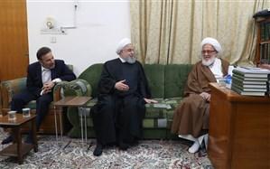 جمهوری اسلامی ایران پرچمدار حکومت شیعه است و چشم همه شعیان جهان به ایران است