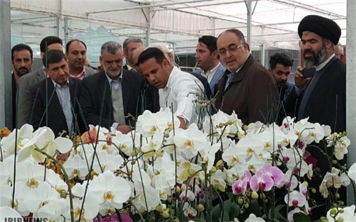 وزیر جهاد کشاورزی