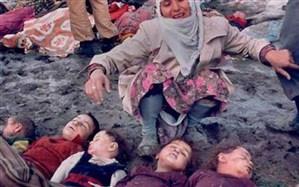 ظریف: ما و برادران کُردمان حمله شیمیایی به حلبچه را فراموش نمی کنیم