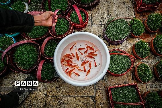 حال و هوای میدان تجریش در آستانه سال نو