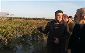 لاریجانی از مناطق سیل زده مازندران بازدید کرد