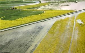 پرداخت غرامت سیل به بیمهگذاران کشاورزی آغاز شد