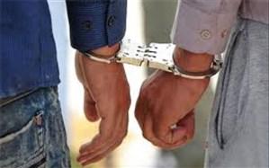 دستگیری ۲۵ نفر در پارتی شبانه