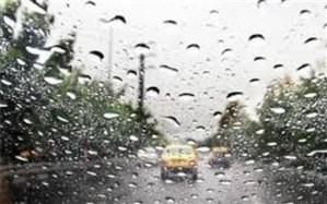 بارش باران در بوشهر آغاز شد