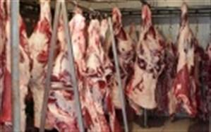 کشف 176 کیلوگرم گوشت فاسد در کازرون