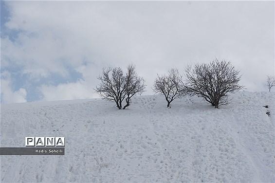 برف بهاری درگردنه اسدآباد همدان