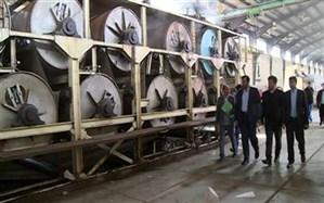 بهره برداری از کارخانه کاغذ زاگرس، گامی در راستای رونق تولید
