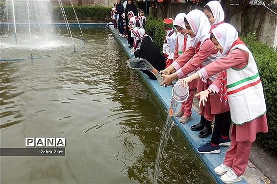 رهاسازی ماهیان قرمز در محمودآباد