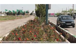 اجرای بیش از ۲ هزار متر لوله گذاری آب خام ، کاشت ۱۱۰۰ اصله نهال و ۵ هزار گل فصلی در رینگ جمکران