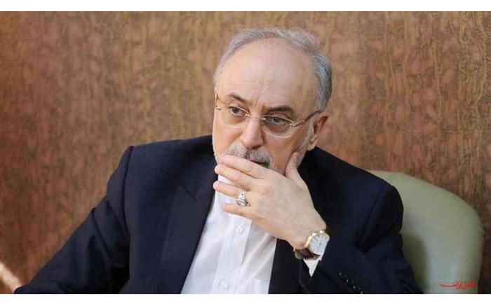 صالحی:گزارش تعاملات در عرصه علوم و فنون هسته ای به رییس جمهوری ارائه شد
