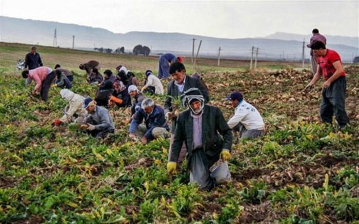 مدیر صندوق بیمه اجتماعی سمنان:7 هزار سرپرست خانوار بیمه نیستند