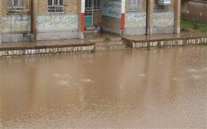 ارسال کمکهای سازمان استثنایی برای دانشآموزان با نیازهای ویژه در مناطق سیلزده