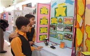 ارائه 67 پروژه علمی توسط 181 دانش آموز دوره ابتدایی