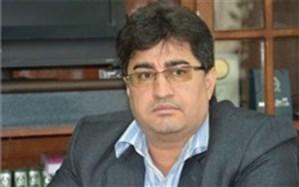 دانش تخصصی آموزشدهندگان سوادآموزی استان بوشهر ارتقا مییابد