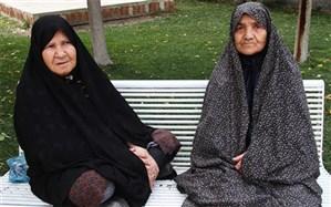 تعداد زنان سالمند تنها ، در کشور ۲ برابر تعداد مردان است