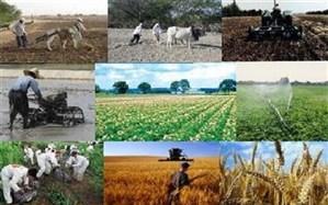جشنواره ایدههای برتر بخش کشاورزی برگزار میشود