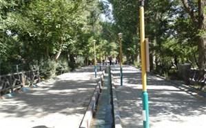گزارش قطع درختان اردوگاه دانش آموزی  الغدیر تبریز تکذیب شد