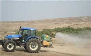 مبارزه با ملخ صحرایی در استان به بیش از  50 هزار هکتار رسید
