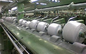 شهردار منطقه 20: طرح مطالعاتی کارخانه چیت ری تهیه شد
