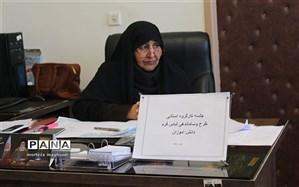 جلسه کارگروه ساماندهی فرم  مدارس در کرمان برگزار شد