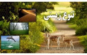 شعار روز جهانی محیط زیست با محوریت «تنوع ریستی»